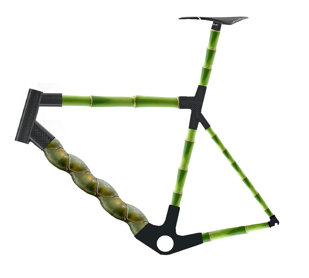 Bamboo Bike Frame
